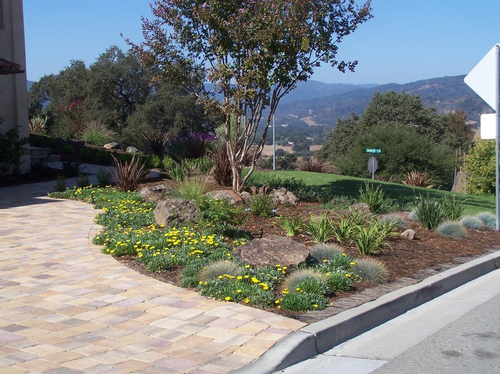 Planting Next to Paver Driveway